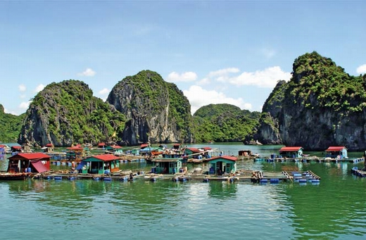 Halong bay - Catba island 2 days